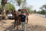 bagan_horse2.jpg